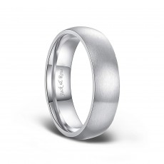 Dome Brushed Titanium Rings