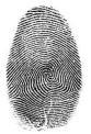 fingerprint engraving example